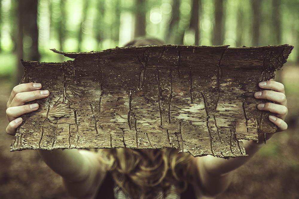 ANNABIS, hemp cosmetics together with Oak bark?