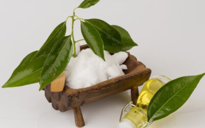 WHY IS CAMPHOR SO POPULAR IN THE COSMETIC BRANCH?